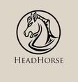 Head Horse Logo vector image