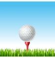 Golf ball on a tee on a grass vector image