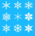 Snowflakes decorative set vector image