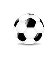 Classic Soccer Ball vector image