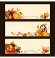 Autumn Banners with Ripe Vegetables Fruit and vector image