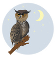 Horned Owl on a Branch2 vector image