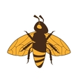 bee insect honey icon graphic vector image