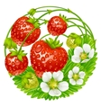 strawberry round composition vector image vector image