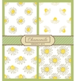 chamomile background simple set vector image vector image