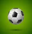 Soccer ball on green vector image