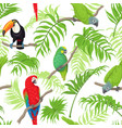 tropical birds and leaves pattern vector image
