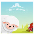 farm animal and rural landscape with sheep vector image