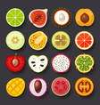 fruit icon set-2 vector image