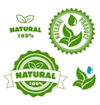 Natural product labels with leaves and drops vector image vector image