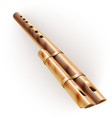 Traditional wooden flute isolated on white vector