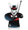 white rabbit vector image