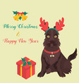 funny cartoon sotch terrier christmas background vector image
