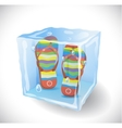 Ice cube with beach slippers vector image