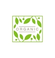 Frame With Leaves And Fruit Organic Product Logo vector image