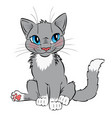 funny gray cat with blue eyes vector image