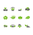 Green leaves flat icons set vector image