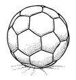 cartoon image of soccer ball icon football symbol vector image