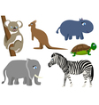 animal wild mammal vector image