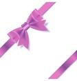PInk Gift Ribbon vector image