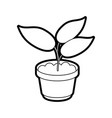 Plant vector image