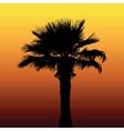 Desert palm silhouette vector image