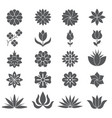 stylized plants and flowers for different design vector image