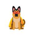 superhero dog sheepdog wearing an orange cape vector image