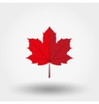 Red maple leaf icon vector image