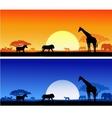 wildlife background vector image