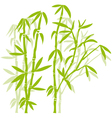green bamboo trees vector image