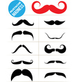 Mustache madness vector image