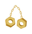 gold nuts on chain isolated two screw-nut hang vector image