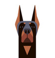 head of doberman in geometric style vector image