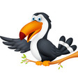 toucan bird cartoon presenting vector image
