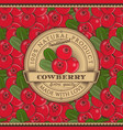 vintage cowberry label on seamless pattern vector image