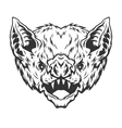 Angry head vampire bat vector image