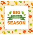 Fall leaves pattern and text vector image vector image