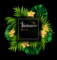 holiday banner with tropical palm monstera leaves vector image