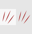 realistic red cut with a office knife vector image