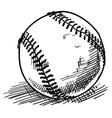 baseball sketch vector image vector image