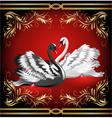 elegant swans vector image