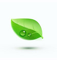 green environment concept icon vector image
