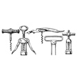 set of corkscrews vector image