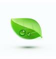 green environment concept icon vector image