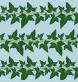 seamless pattern with the ivy leaves vector image