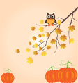 Fall Branch vector image