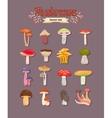mushrooms set vector image