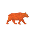 American Black Bear Walking Side Retro vector image