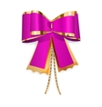 Pink and gold bow vector image